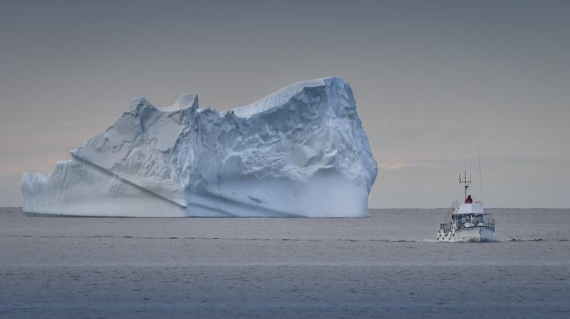 Twillingate Harbor Iceberg & Boat