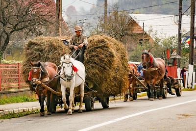 Horse & Carts Romania