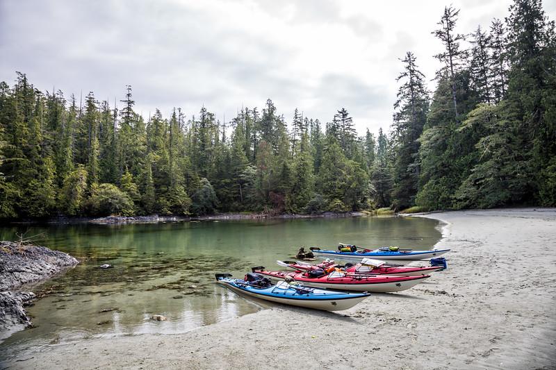 Kayaking vancouver island