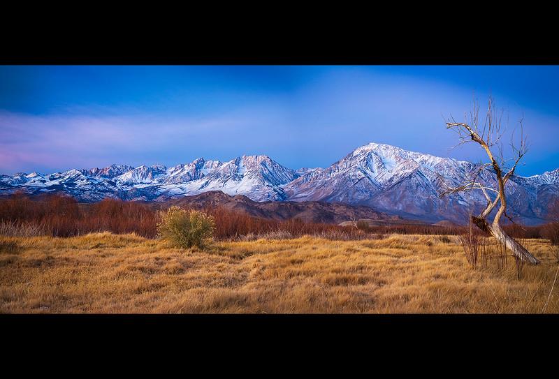Owens_River_Georges_Tree_Mt_Tom_Eastern_Sierra_Panorama1.jpg