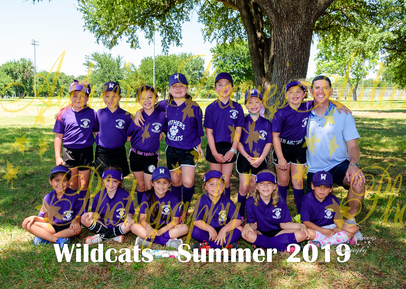 20190608 - # N3 1G Wildcats