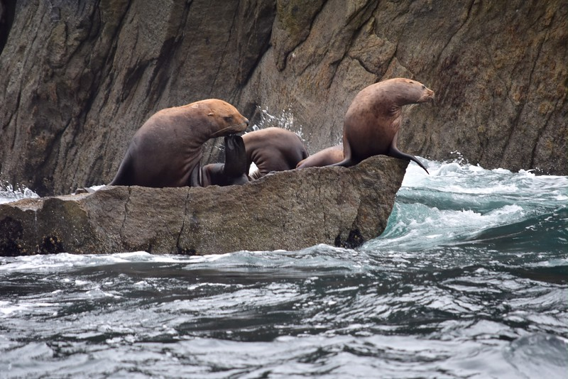 Alaska - 51.jpg
