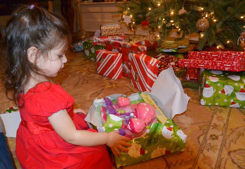 Christmas_035.JPG