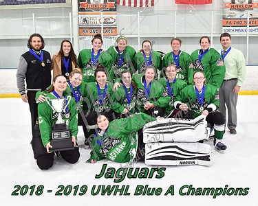 Blue A Championship - Jaguars vs Phoenix