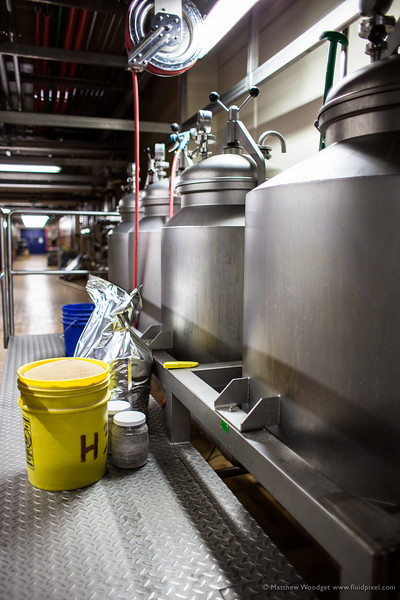 Woodget-140129-013--beer, brewing, Colorado, Fort Collins, industrial production, New Belgium Brewing, steel.jpg