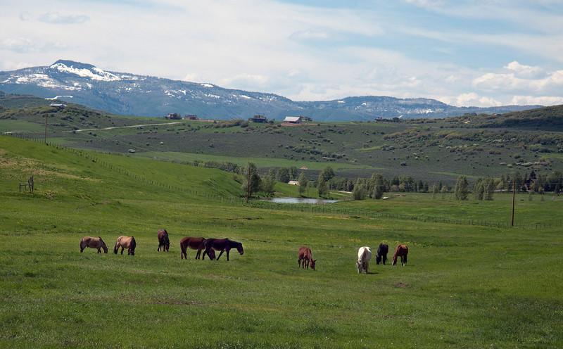 Elk River Valley