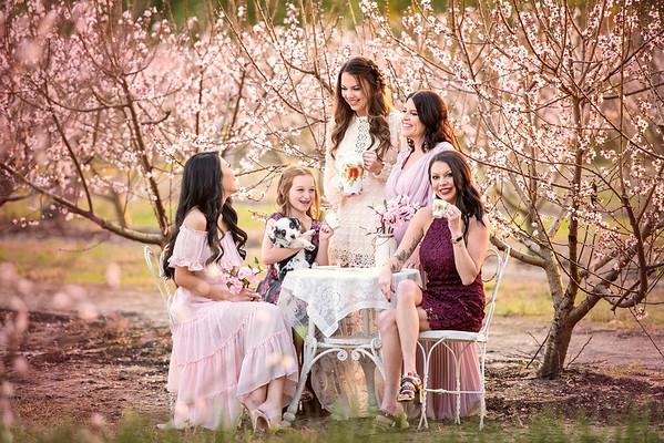 Peach blossoms Feb 2021 - Wehrly