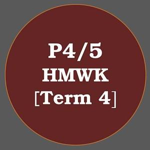 P4/5 HMWK T4