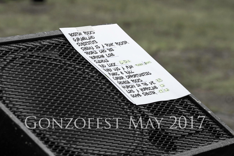 gonzofest17_170527_0081-Edit copy.jpg