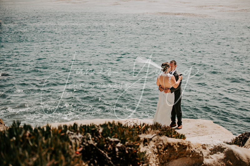 des_and_justin_wedding-2218.jpg