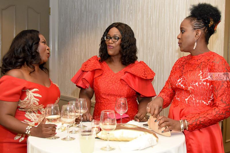 Olawumi's 50th birthday 717.jpg