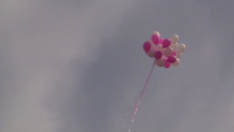 videoblocks-balloons-of-pink-white-color-fly-in-the-sky_raiybtow_thumbnail-full01.jpg