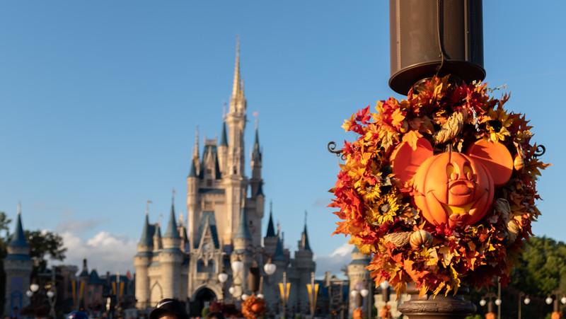 Disney-8109.jpg