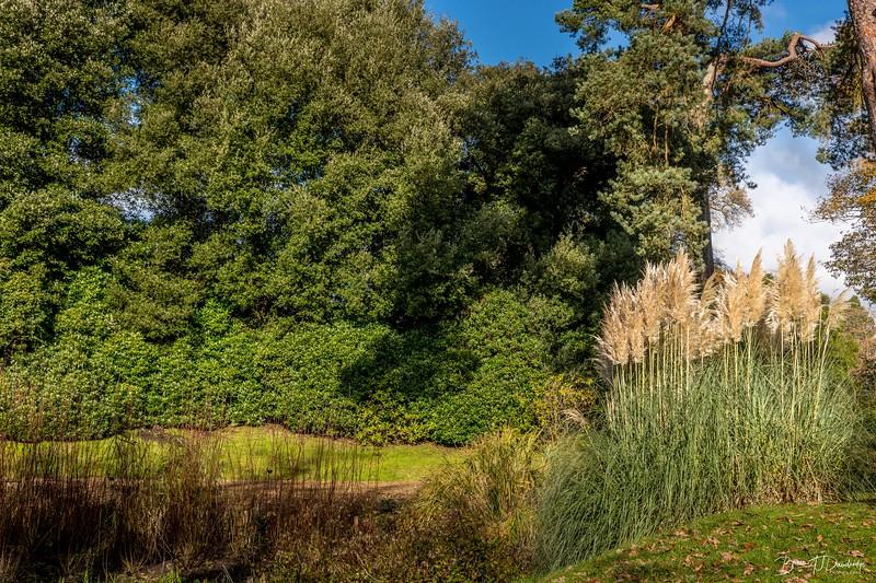 Wakehurst_Autumn-6090.jpg