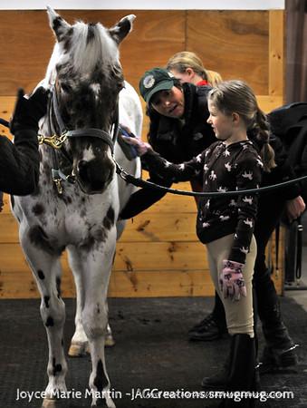 Sindorf Equestrian