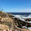 Rocky shore of Acadia National Park, Maine