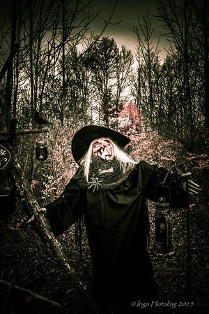 2015 Rehberg Dunn Halloween