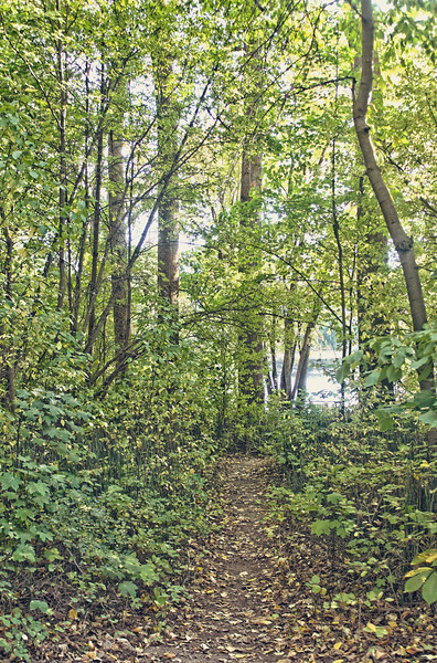 leavenworth_trail_HDR.jpg