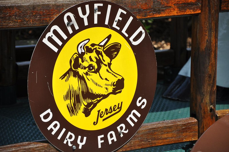 Mayfield Dairy Farms.jpg