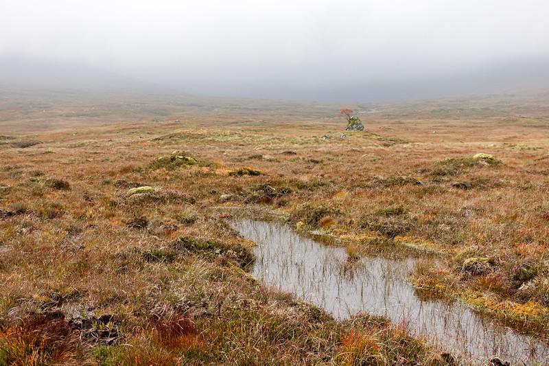 Peat bog on Rannoch Moor