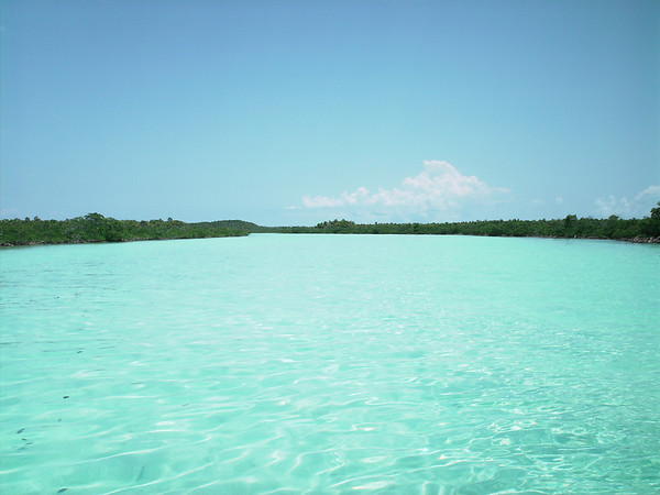 Day Three Shroud Cay
