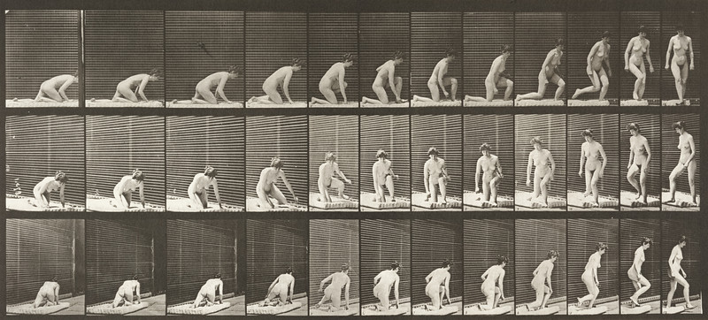 Nude woman arising from kneeling and turning (Animal Locomotion, 1887, plate 255)
