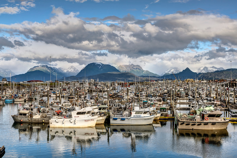 Fishing Boats in Homer