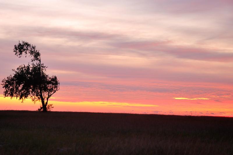 2013-11-28 Sunrise 001.jpg