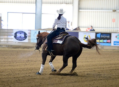 EQUILUME Intermediate np open-Rookie Proffesional