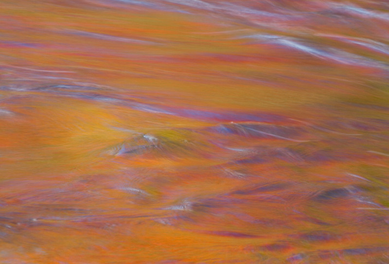 colored water two (1 of 1).jpg