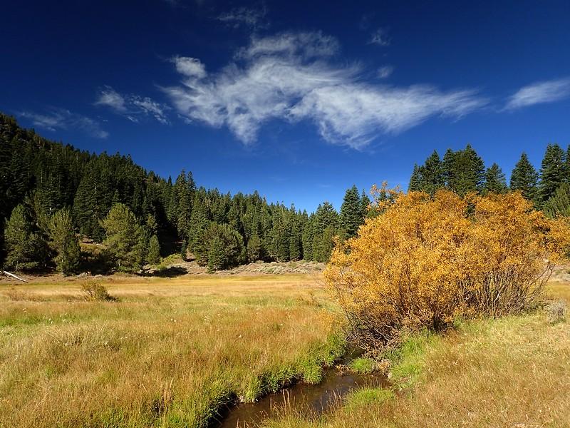 Patterson Lake South Warner Wilderness California