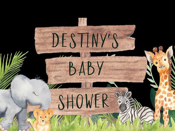 Destiny's Baby Shower