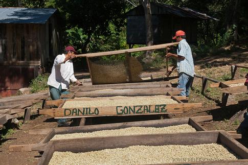 Coffee Drying Trays in La Reyna, Nicaragua