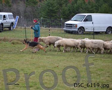 SNH-Herding 11/02/14