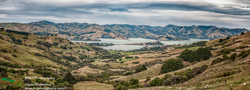 Akaroa Harbour from Hilltop Banks Peninsula