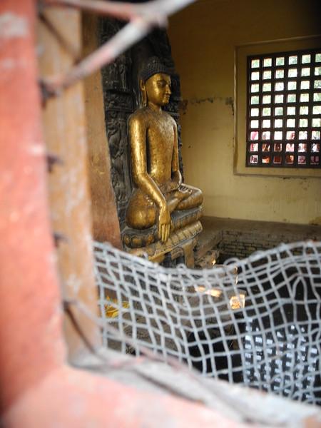 india&nepal2011 008.jpg