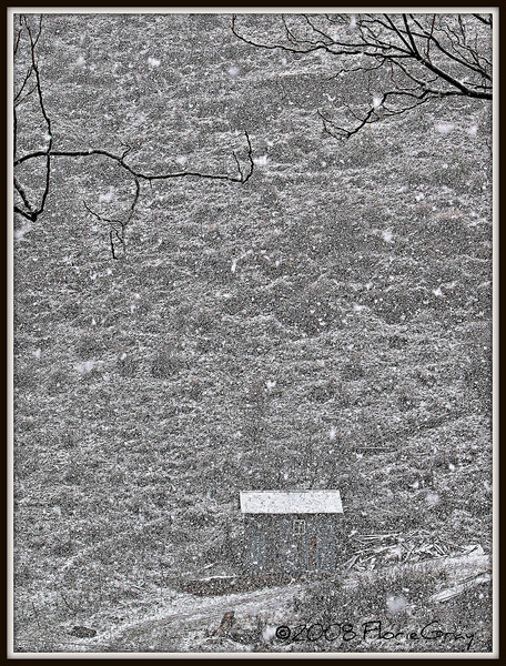 Urge for Going 
