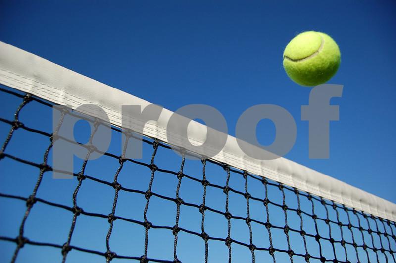 tennis-ball_net