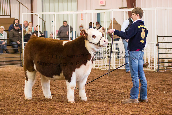 2019 KINGFISHER COUNTY STOCK SHOW
