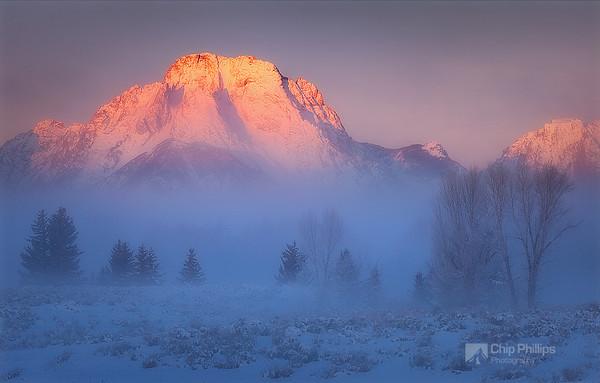 Moran Mist.jpg