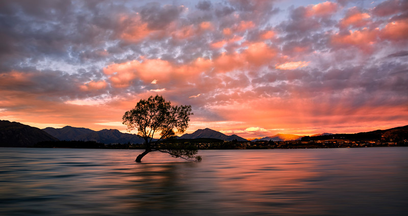 Last Light  -  Lake Wanaka, New Zealand.jpg
