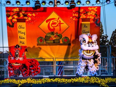 Lunar New Year Festival - Jan 24, 2020