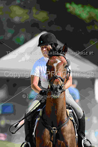 2016 Equestrian Events