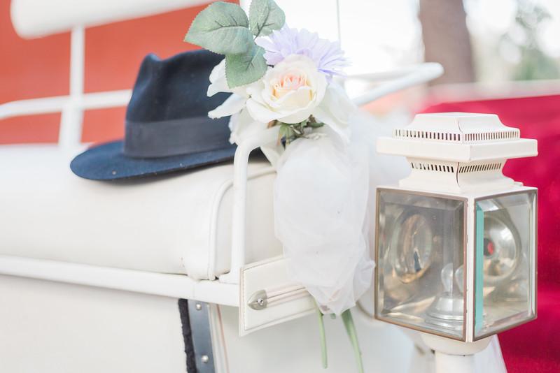 ELP0312 DeRoxtro Oak-K Farm Lakeland wedding-830.jpg