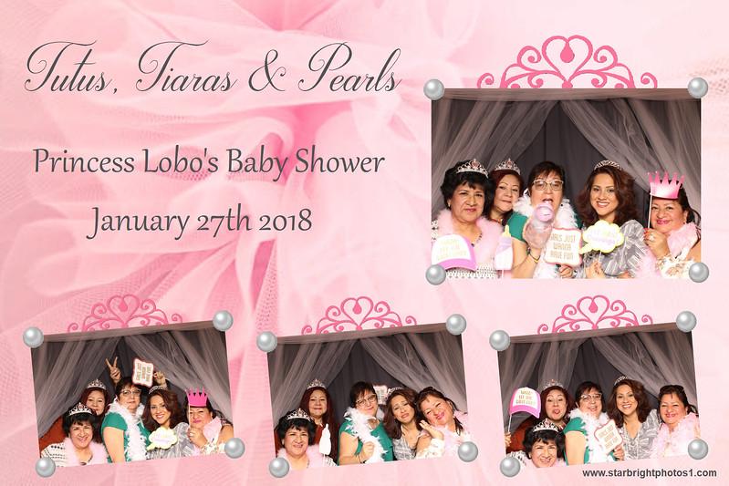 Lobo Baby Shower_10.jpg
