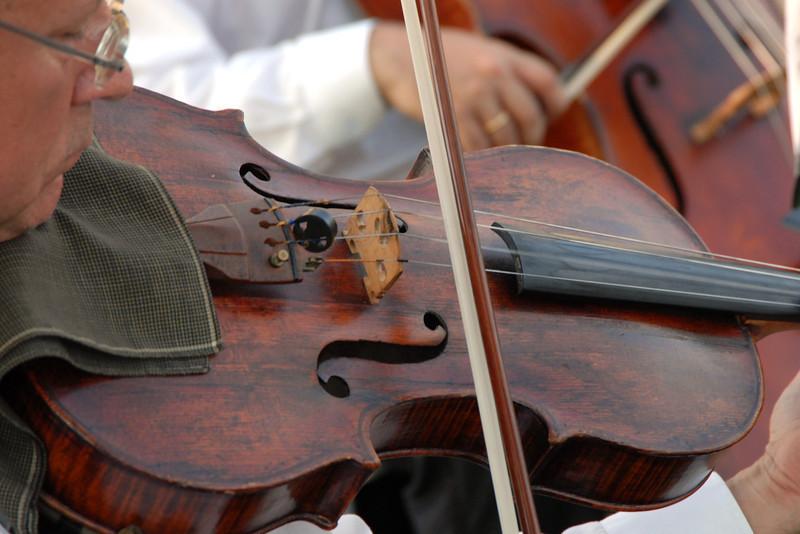 PM1_2807 violin 812 .jpg