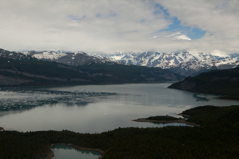 Alaska Icy Bay-3962.jpg