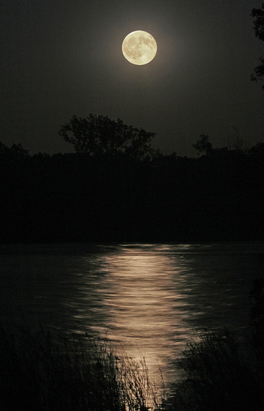 Moonlight Over The Maumee
