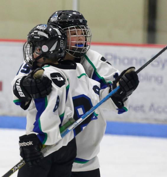 2016-Feb_12-Hockey-JPM1955.jpg