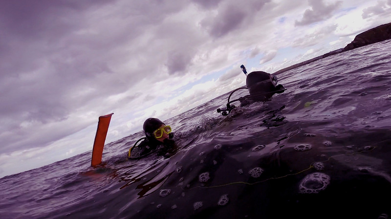 Devon-Underwater-33.jpg